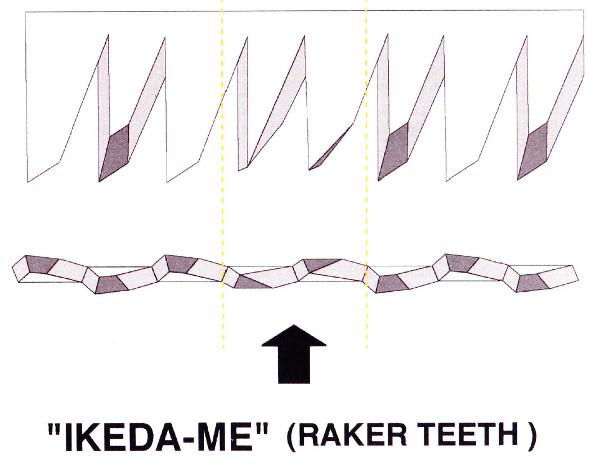 raker teeth