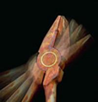 Selbst verrostete Zangen funktionieren Dank der Messingpuffer zwischen den Gelenken weiter einwandfrei