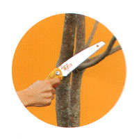 LIFESAW Mini Pruning Saw