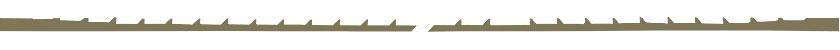 PEGAS Fretsaw Blade Special Skip Reverse
